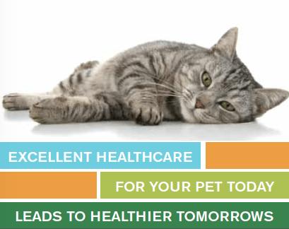 Health Plan2